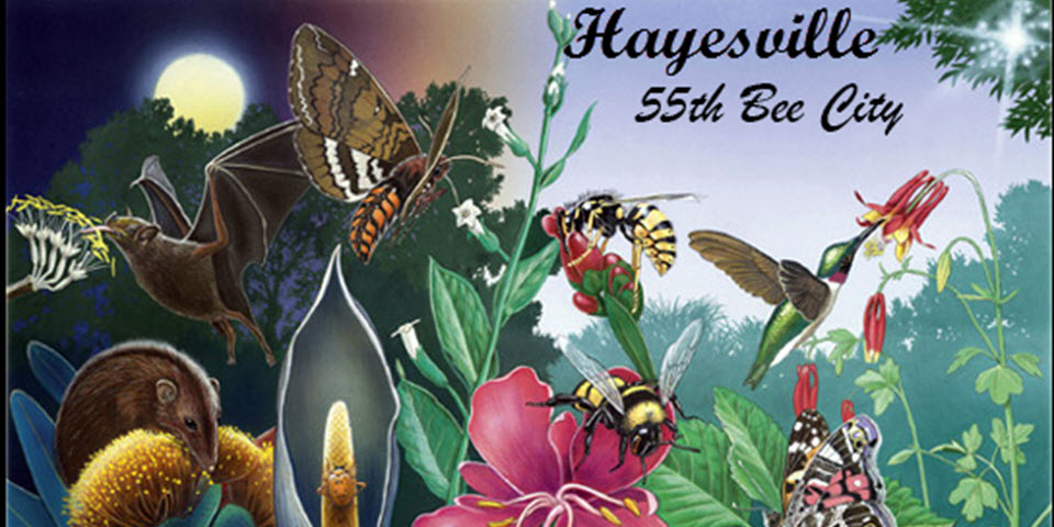 Hayesville -- a Bee City